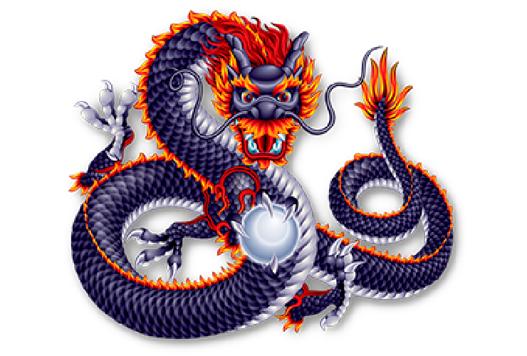 Enjoy11 5 Dragons Online Gambling Games Terms & Conditions Icon