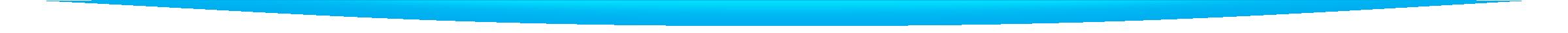 5 Fortune Dragons Page Desktop Divider